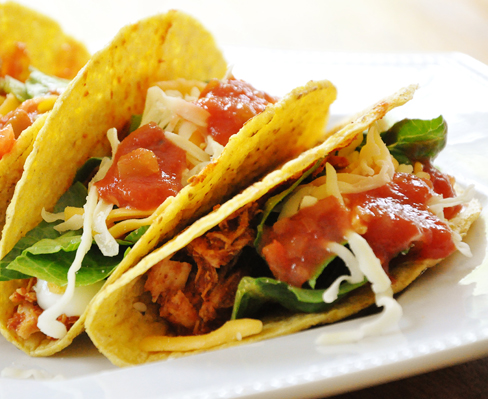 Shredded Chicken Tacos — Living Lou