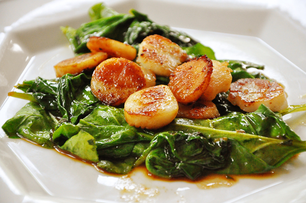 seared scallops over a bed of wilted spinach