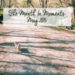 The Month in Moments: May 2015