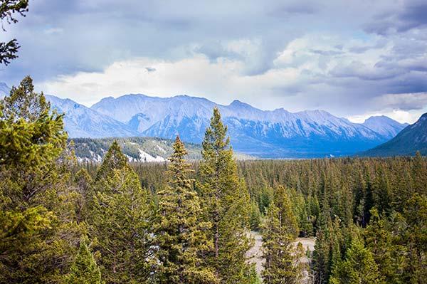 Hoodoos Trail Banff