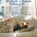 The Month in Moments: February 2016