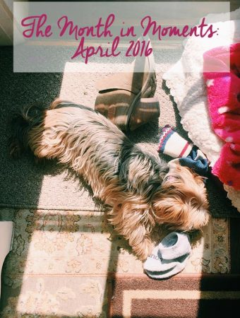 Taking a look back at the highlights of April 2016. | livinglou.com