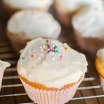 Closeup of vanilla cupcake with vanilla frosting and sprinkles